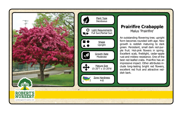 Crabapple - Prairie Fire