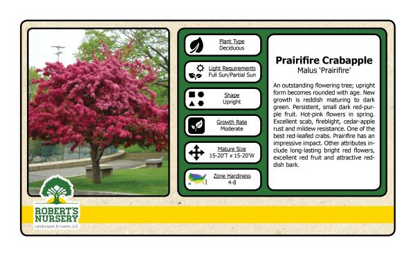 Crabapple - Prairie Fire