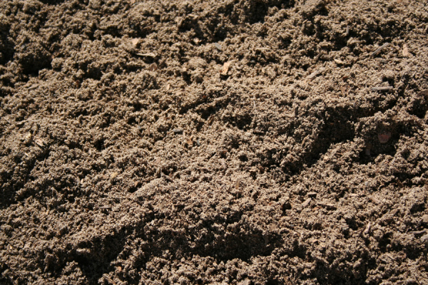 Bulk Top Soil