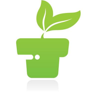 Planter Arrangements