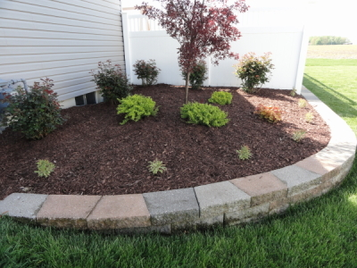 NOW IS THE TIME TO PRUNE, CLEAN & MULCH AS NEEDED…