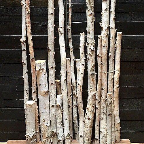 Birch Poles / Logs