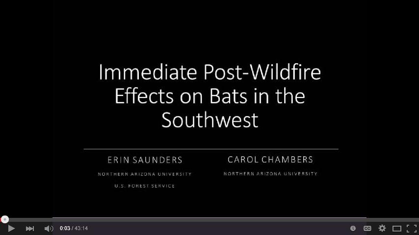 Bat wildfire response