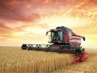 Agriculture Translation
