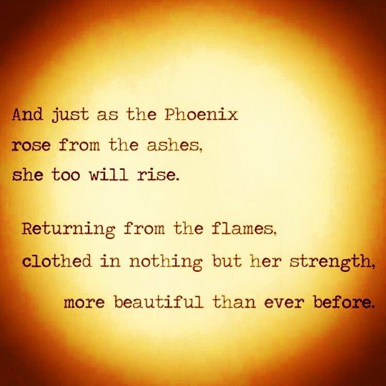 phoenix// pt2