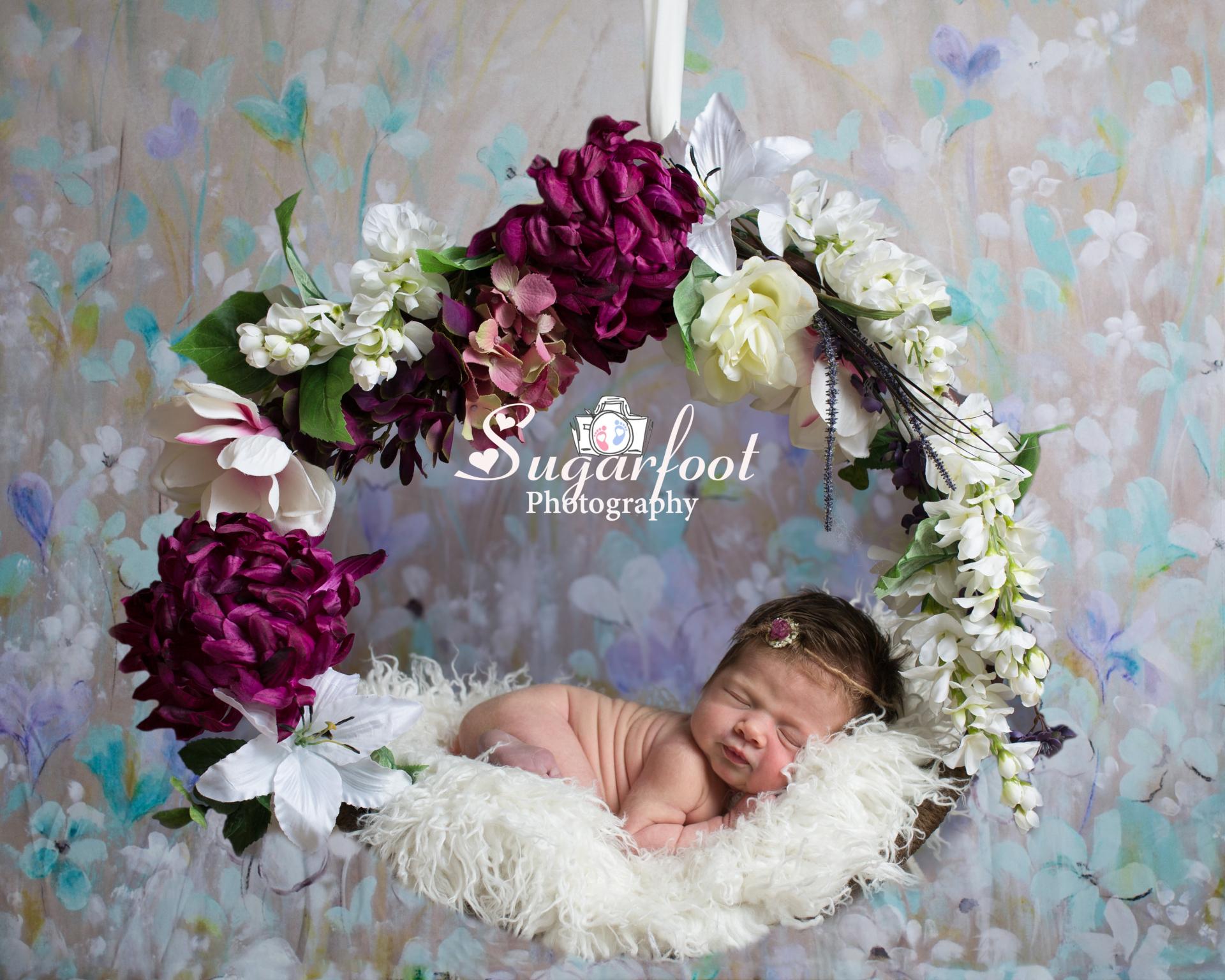 stl_newborn_baby_photographer_maternity_photographer_cardinals_blue
