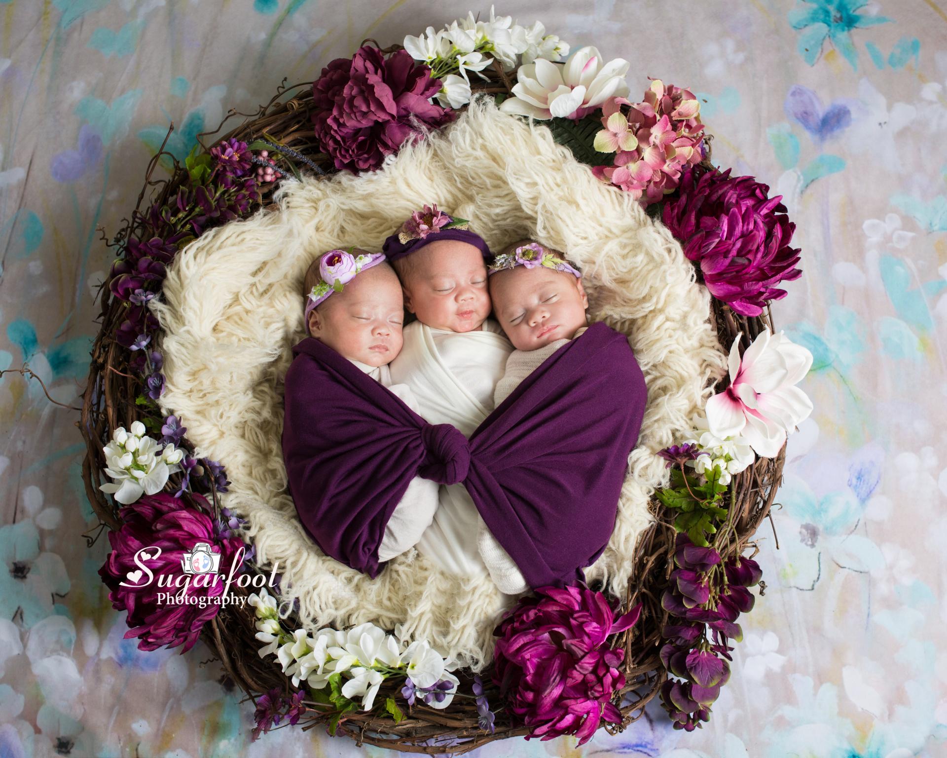 stl_newborn_baby_photographer_maternity_photographer_cardinals_blues