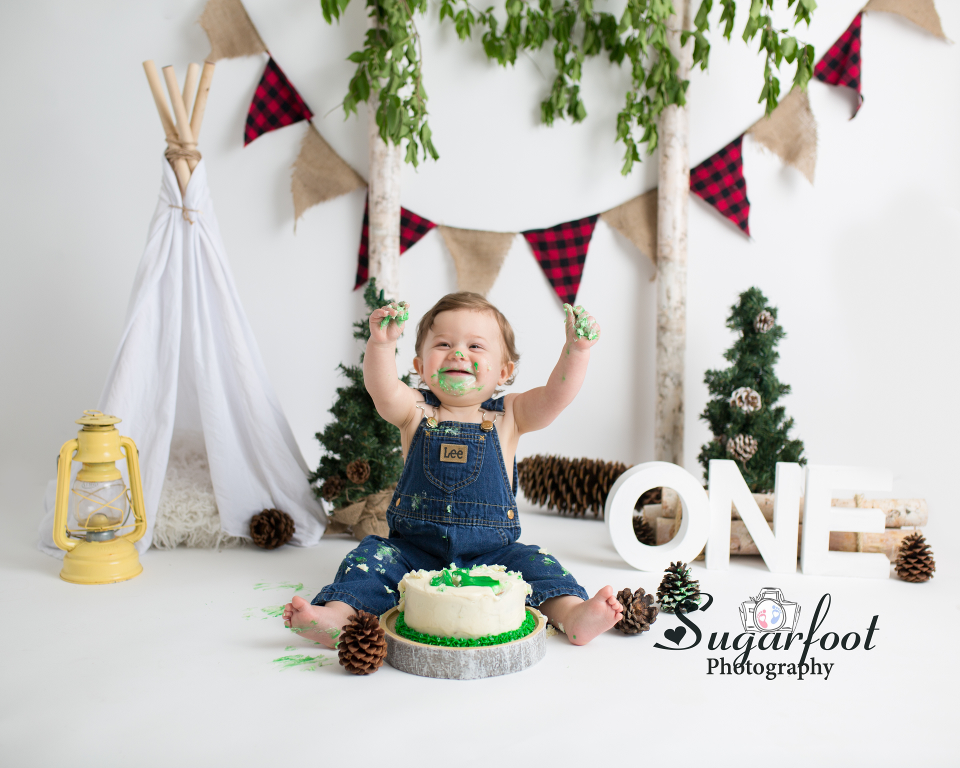 st_louis_newborn_baby_cake_smash_photographer_woodland