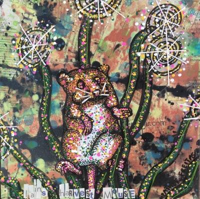 Iain's Harvest Mouse