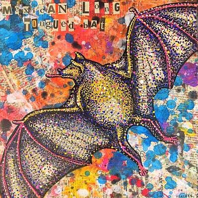 Mexican Long Tongued Bat