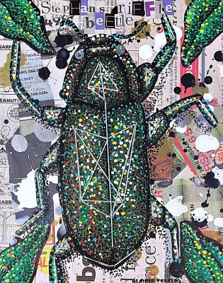 Riffel Beetle