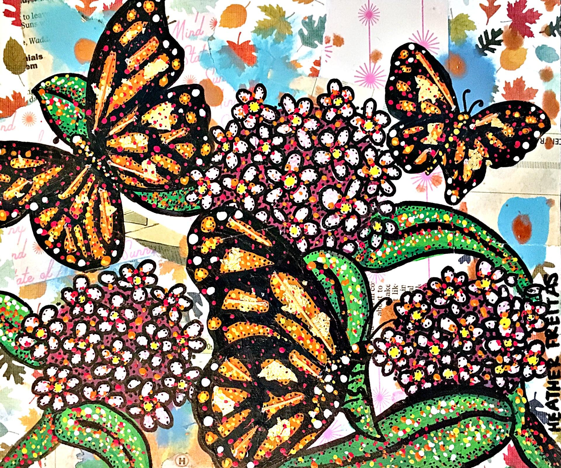 The Monarchs Milkweed