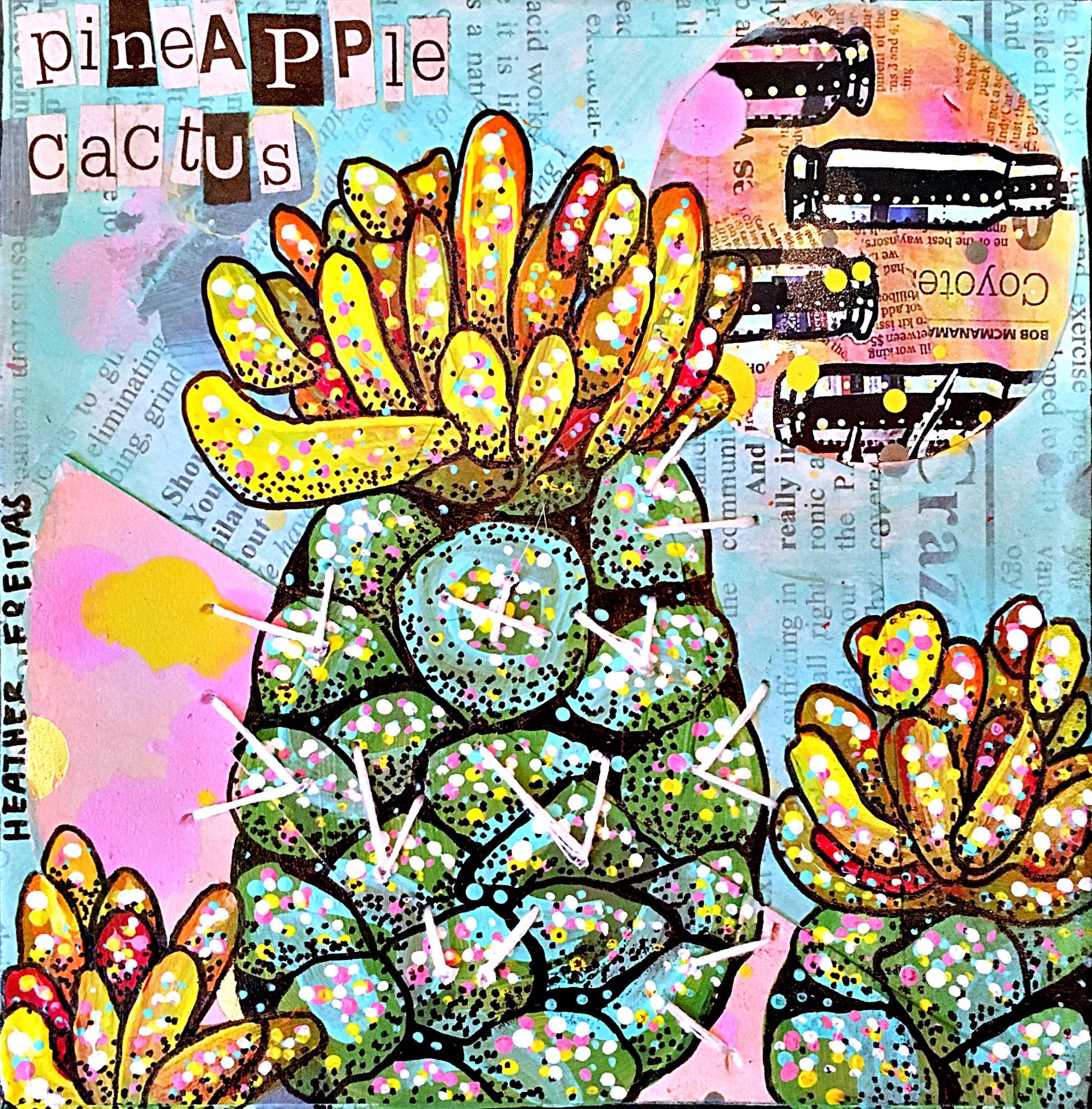 Pineapple Cactus