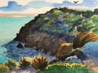 Cliff Path, Mornington Peninsula by Elizabeth Martyn Artist Water Colour Art Classes