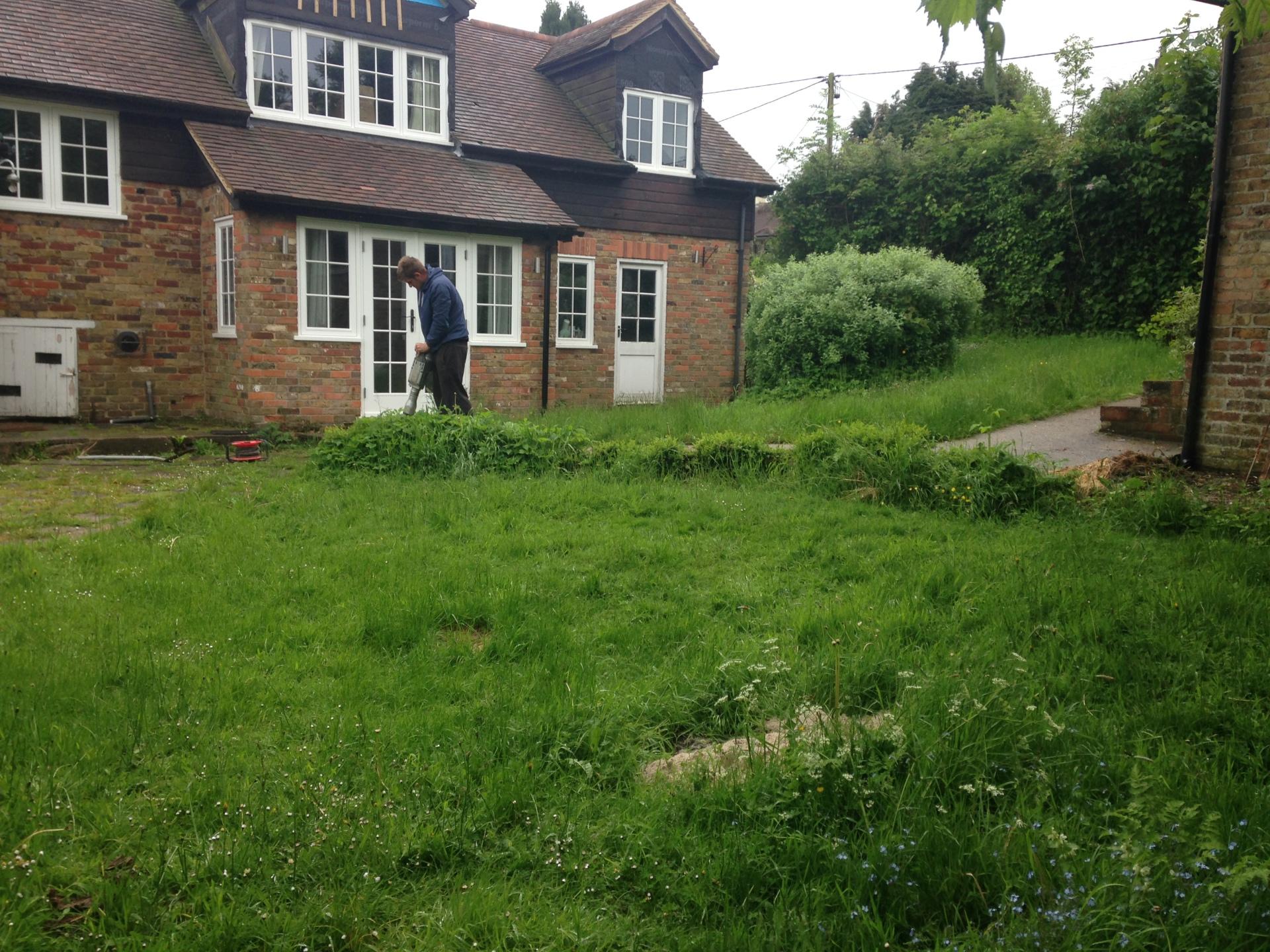 BEFORE - Uneven garden