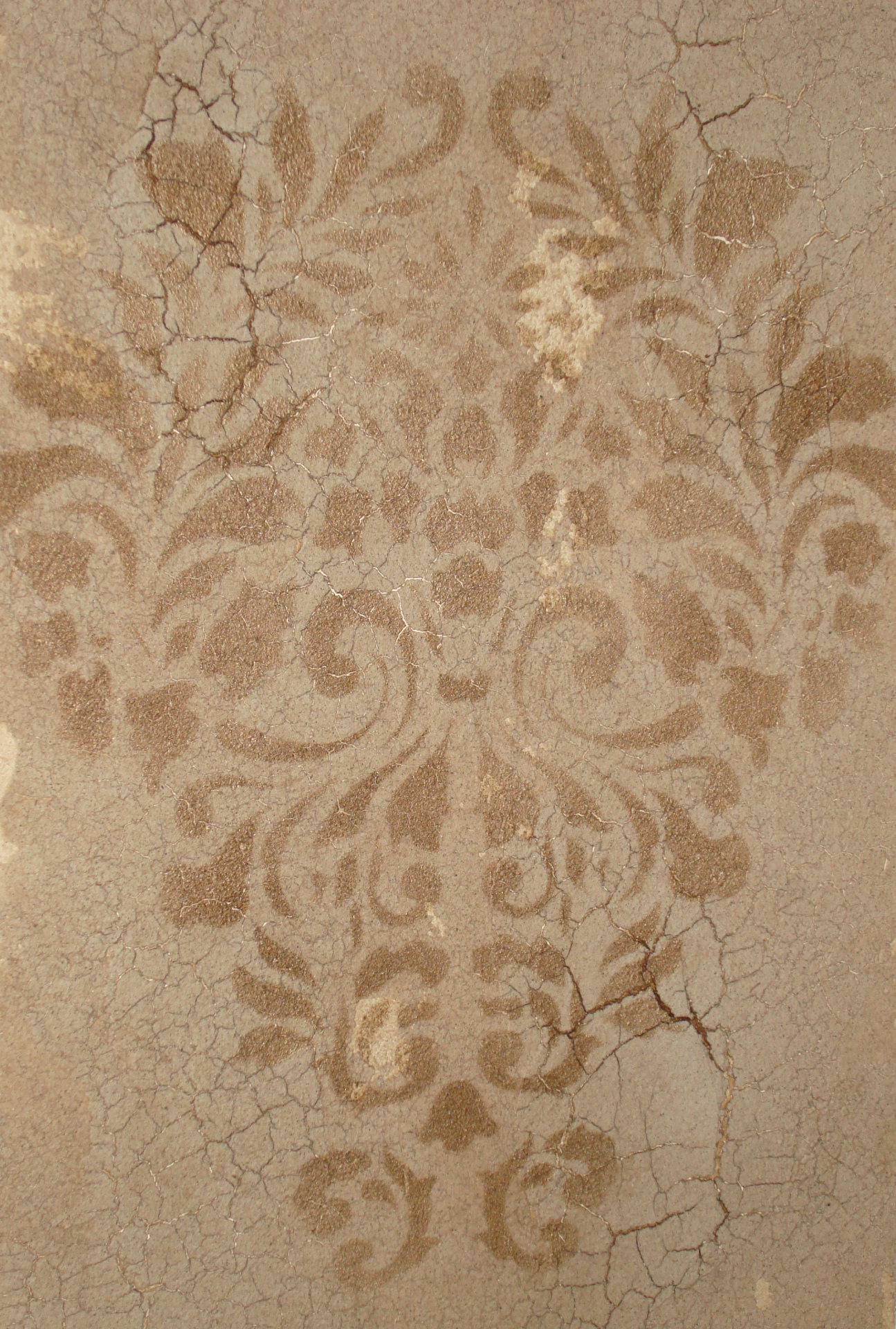 rough crackled plaster wall with stencil faux finish decorative paint raleigh