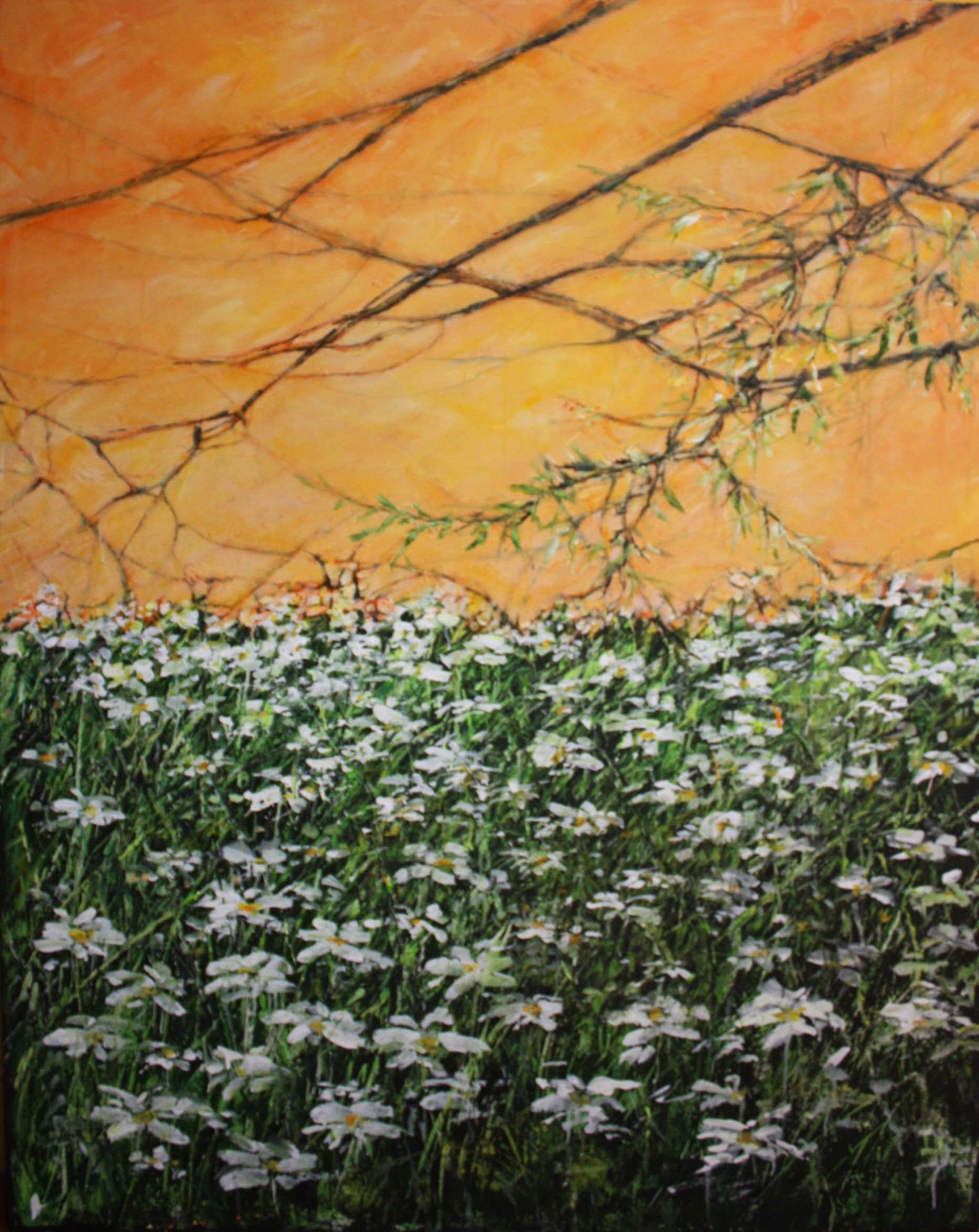 Daisies under orange sky( one of 2 panels)