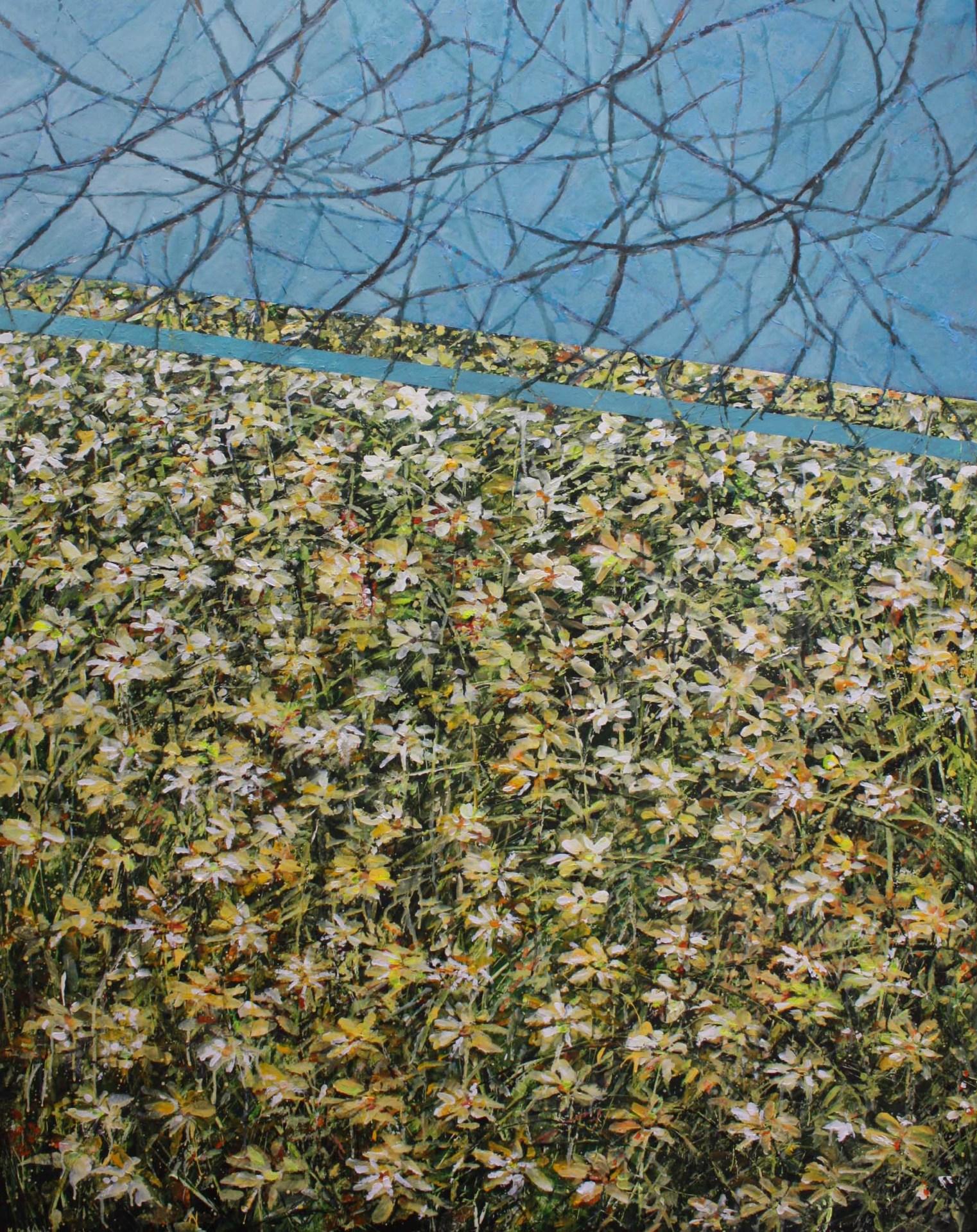 Flower field onder blue sky