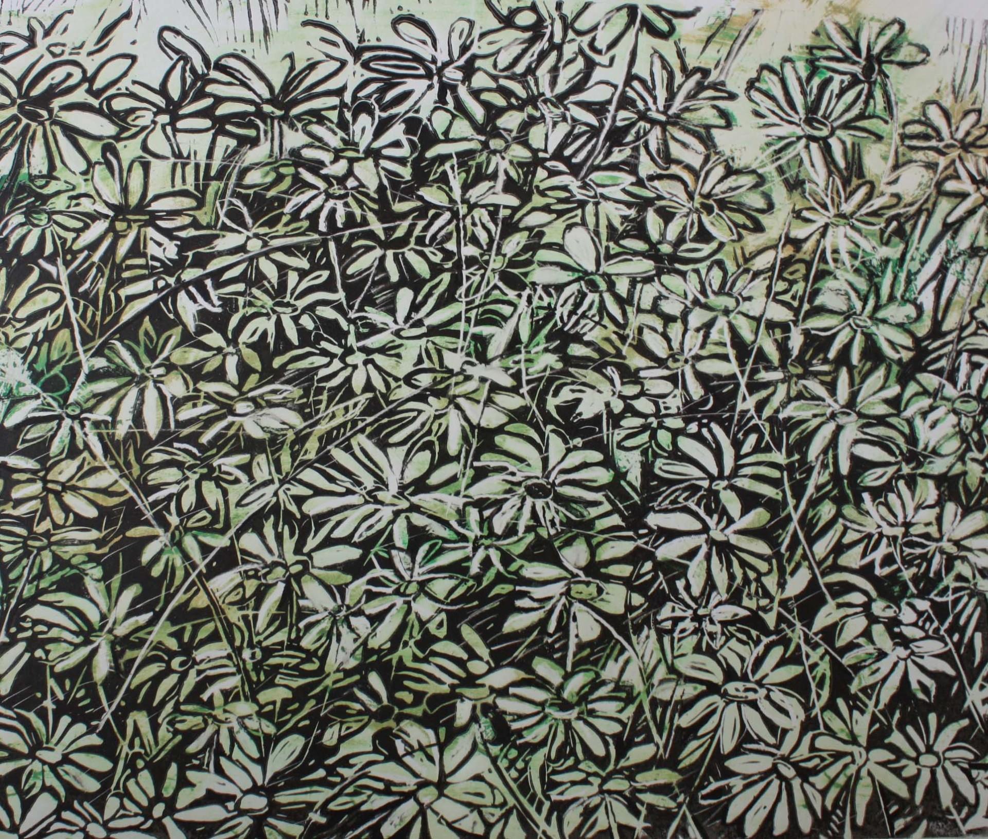 Lino flower field
