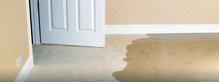 Image of wet carpet from a water damage in a home, flooding