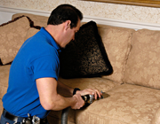 Image of a certified technician professionally cleaning upholstery