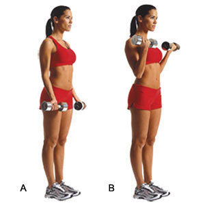 Dumbbell Bicep Curls