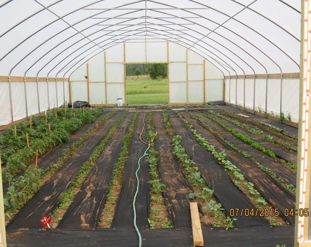 Planting the High Tunnel