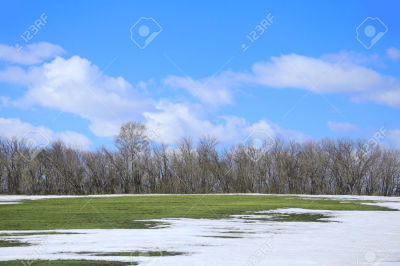 snow melting from field of green with trees in backgound.