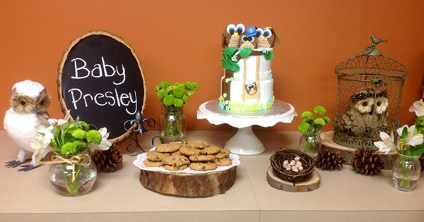 Owl themed dessert table