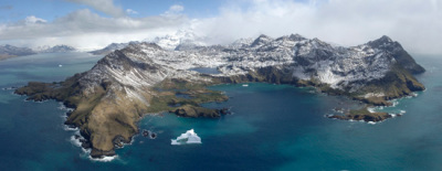 Life in the slowest lane, creeps back from the ice age, on South Georgia's seabed