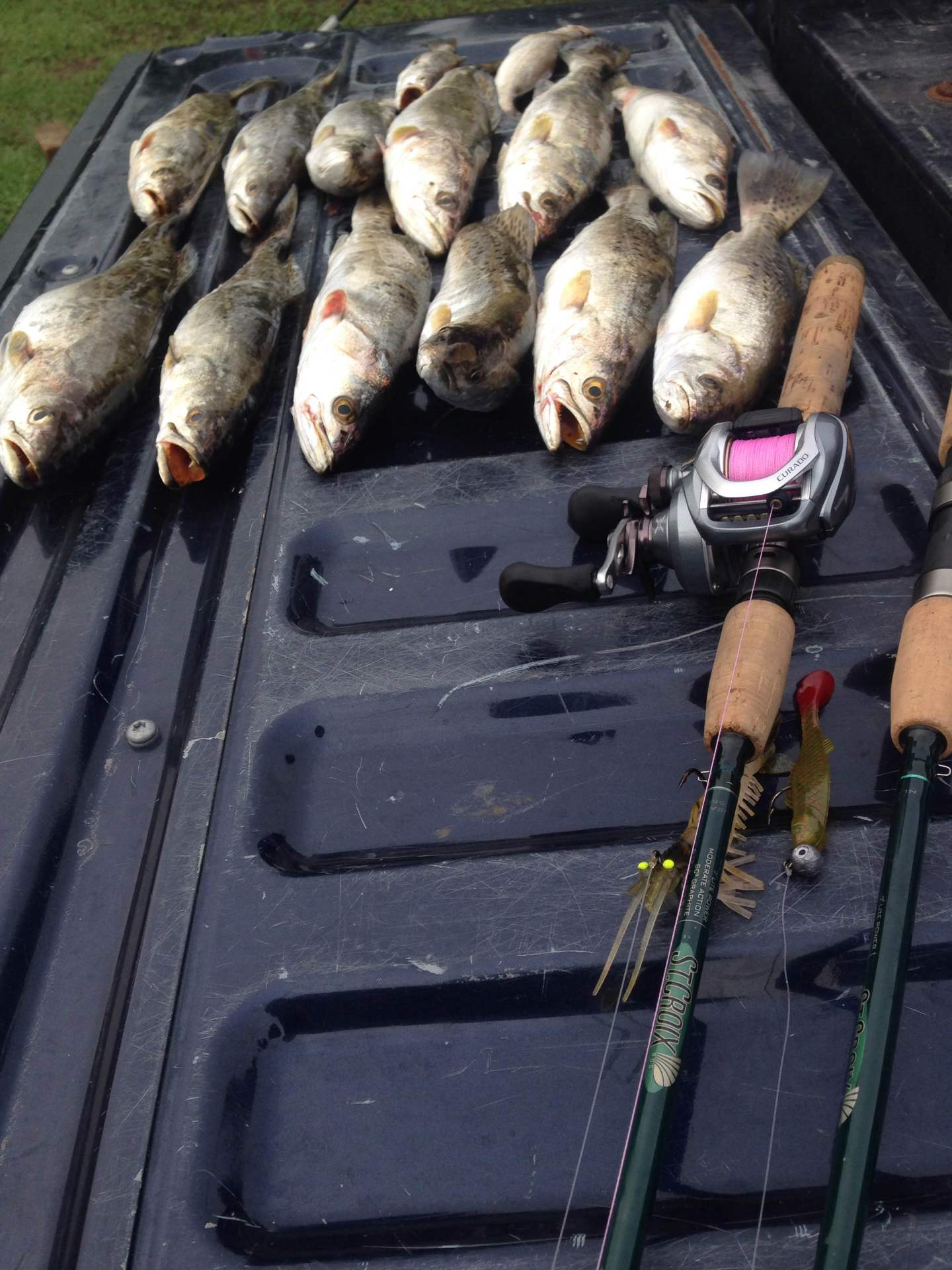 trout, speckled trout, fishing, ms gulf coast, alex smith fishing