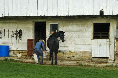 fine art photography, Amish
