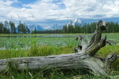 fine art photography, Grand Tetons, Colter Bay, mountains. landscape