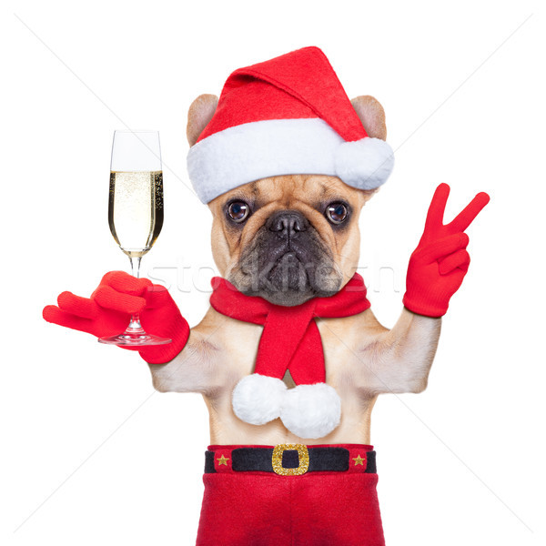 We are starting to get quite full for Christmas, so make sure you get your booking in now! Christmas