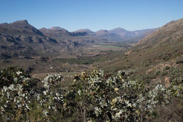 Cederberg Mountain view