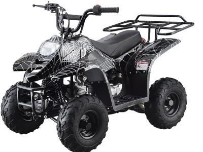 Tao Tao 110cc ATV