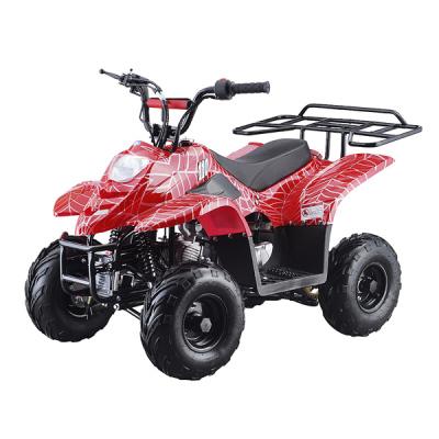 110 ATV