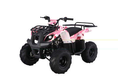 Tao Tao 135cc ATV