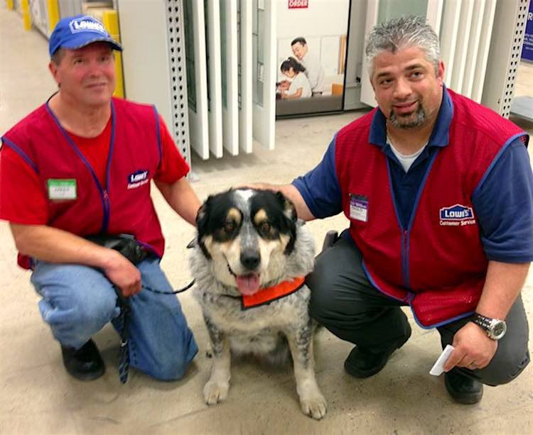 Man with Brain Injury Cries Tears of Joy When Lowe's Offers Job to Him –and his Dog