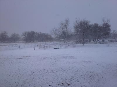 WE GOT SNOW!!!!!!