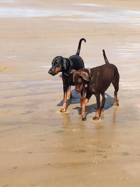 Tilly & Nahla
