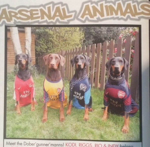 In the Arsenal magazine