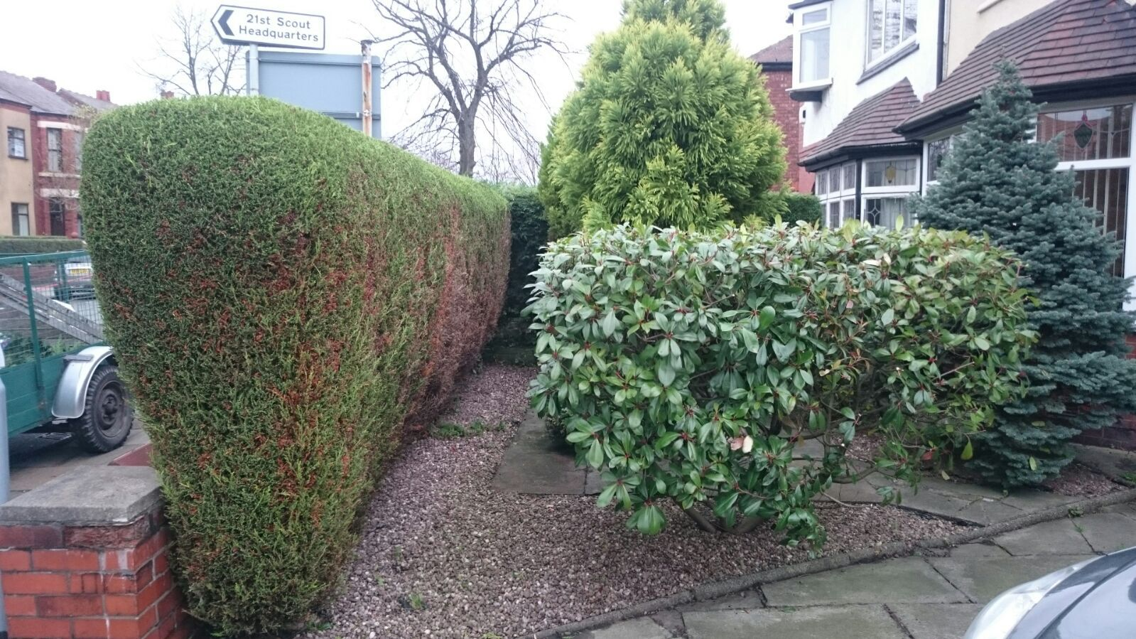 Exquisite Hedges