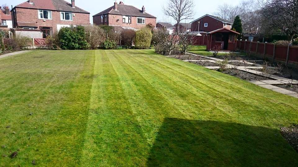 Luscious lawns