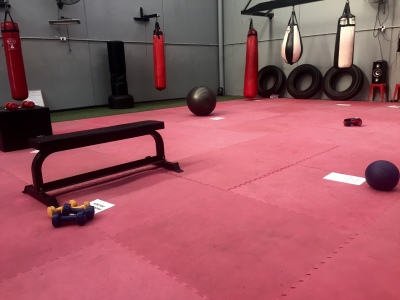 Circuit Boxing