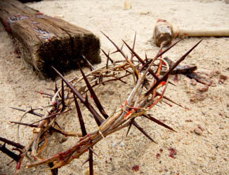 Following Jesus' Example of Suffering