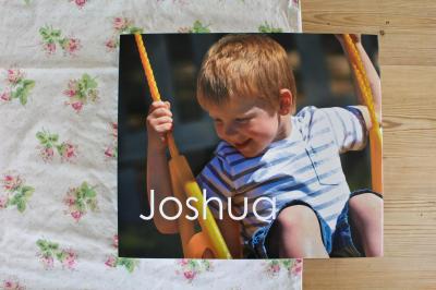 Joshua's Book