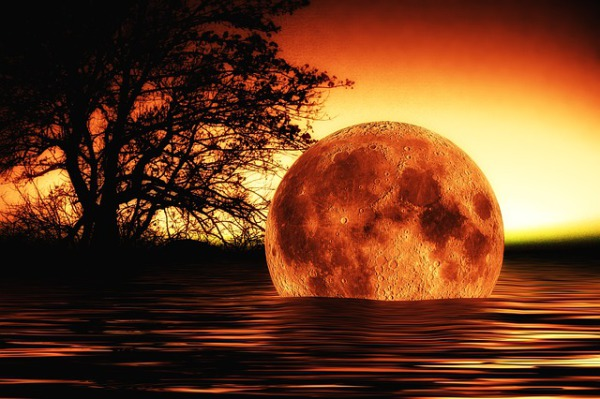 Pass On To Every Pastor!