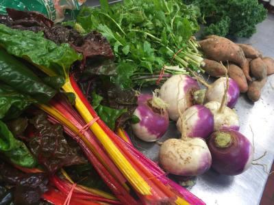 Organic Farm Fresh Ingredients