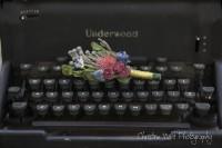 rent antique typewriter Edmonton Wedding Decor